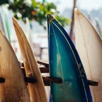 SURFING CLUB ON!