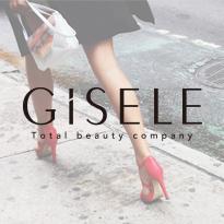 GiSELE  webサイト
