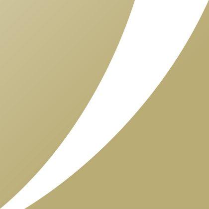 BLOWIN Corporate logo profile